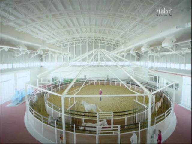 ساحة سير مكيفة لتدريب الخيول