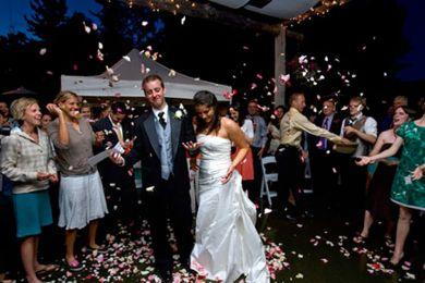 ضيفة الزفاف لم تكف عن الرقص البطيء مع العريس